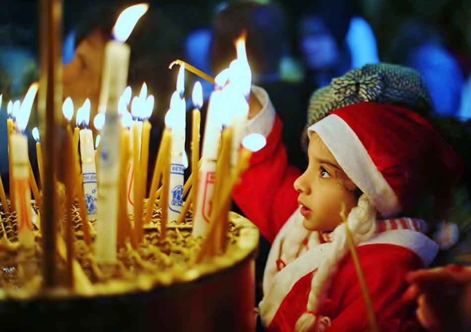 был картинки рождество россии породы, характеристика